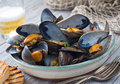 Steamed mussels a bowl of delicious with grilled bread and beer on a rustic tabletop with fish net Stock Images