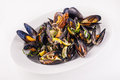 Steamed mussels on a white isolated background Stock Image