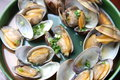 Steamed shellfish studio shot of Royalty Free Stock Image