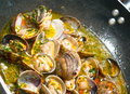 Steamer clams with garlic and basil delicious fresh Stock Images