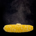 Steaming corn with melting butter (Clipping path on the corn inc Royalty Free Stock Photo