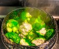 Steaming Fresh Broccoli Florets Royalty Free Stock Photo