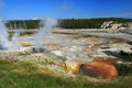 Steaming pool of geysers in yellowstone national park wyoming Royalty Free Stock Photo