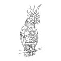 Steampunk style parrot coloring book vector