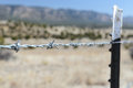 Steel barbed wire protecting trespass close up barbwire to stop trespassing the land Stock Photo