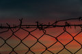 Steel mesh barbed wire fence sunset Royalty Free Stock Photo