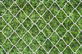 Steel net on green grass. Stock Photography