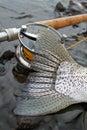 Steelhead Trout Tail Fly Fishing Royalty Free Stock Photo
