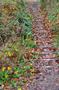 Steep garden steps. Royalty Free Stock Photo