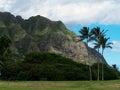 Steep mountain and palm trees blue sky white clouds oahu hawaii Stock Photo