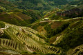 Steep Rice Terrace Mountain Titian Longji Overcast Stock Photos