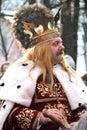 Stefan cel Mare Portrait Royalty Free Stock Photo