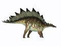 Stegosaurus Dinosaur Side Profile Royalty Free Stock Photo