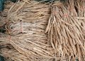 Stemona tuberosa Lour roots. Cancer treatment