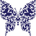 Stencil symmetry outline butterfly from dark blue butterflies abstract on white background vector illustration for decor Stock Image