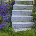 Step stepstones and flowers in the garden Stock Photos