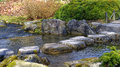 Step stones garden landscaping Royalty Free Stock Photo