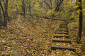 Step Trail Autumn Royalty Free Stock Image