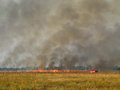 Steppe burns on a picture a fire is in the field a lonely fire truck shows the scale of the phenomenon evidently a windless Stock Image