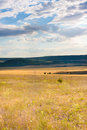 Steppe crimean orange landscape with clouds sky Royalty Free Stock Image
