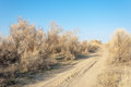 Steppe in the late autumn the photo was taken in kazakhstan Royalty Free Stock Photography