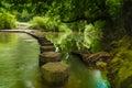 Stepping stones Boxhill, Surrey, England g Royalty Free Stock Photo