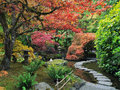 Stepping stones in the Japanese Garden Royalty Free Stock Photo