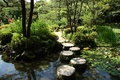 Stepping stones in japanese garden Royalty Free Stock Photo