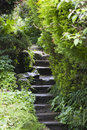 Steps Through the Garden Stock Images