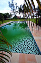 Steps into green swimming pool Royalty Free Stock Photo