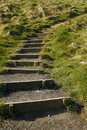 Steps leading up the grassy hill Royalty Free Stock Photography