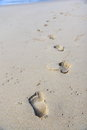 Steps in the sand on a beach fading distance Royalty Free Stock Photo