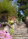 Steps in tropical garden Royalty Free Stock Photos
