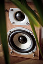 Stereo Speaker Royalty Free Stock Photo