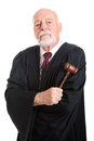 Stern judge with gavel holding his isolated on white Stock Images