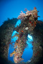 Stern and propeller of the Dunraven shipwreck. Royalty Free Stock Photo