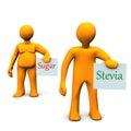 Stevia Sugar Royalty Free Stock Photo