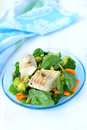 Stewed haddock and salad braised fish with vegetables is made of broccoli carrots spinach Royalty Free Stock Photo
