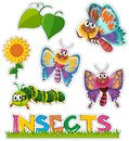 Sticker set with butterflies in garden Royalty Free Stock Photo