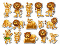 Sticker set of lion family Royalty Free Stock Photo