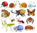 Sticker set of many insects Royalty Free Stock Photo