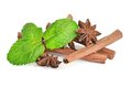 Sticks of cinnamon with mint and anise see my other works in portfolio Stock Photography