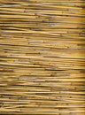 Sticks of Straw Stock Photos