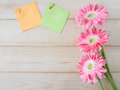 Sticky note and pink flower 1 Royalty Free Stock Photo