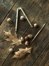 Still life of acorns some a few dried leaves and a nutcracker and pick Royalty Free Stock Photography