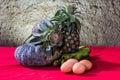 Still life art photography on banana pumpkin egg and pineapple Stock Images