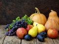 Still life of autumn fruits: pumpkin, grape, apple, pear, plum Royalty Free Stock Photo
