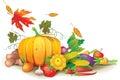 Still life of autumn harvest Royalty Free Stock Photo