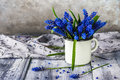 Still life bouquet spring flowers blue Royalty Free Stock Photo