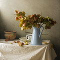 Still life with branches of golden rain tree Stock Images